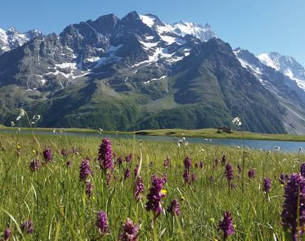Parcs et réserves naturels