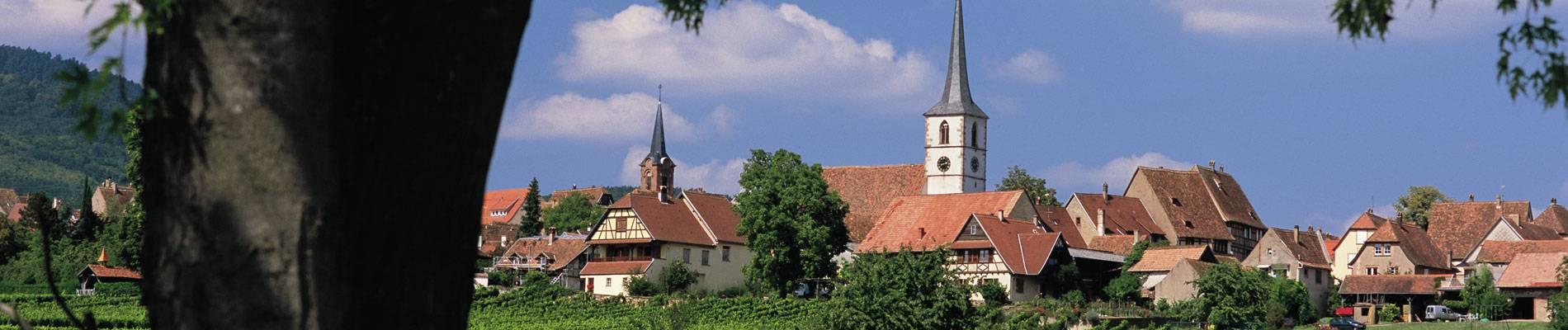 Mittelbergheim-Vin.jpg