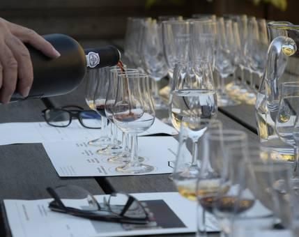 Apprendre et s'initier au vin