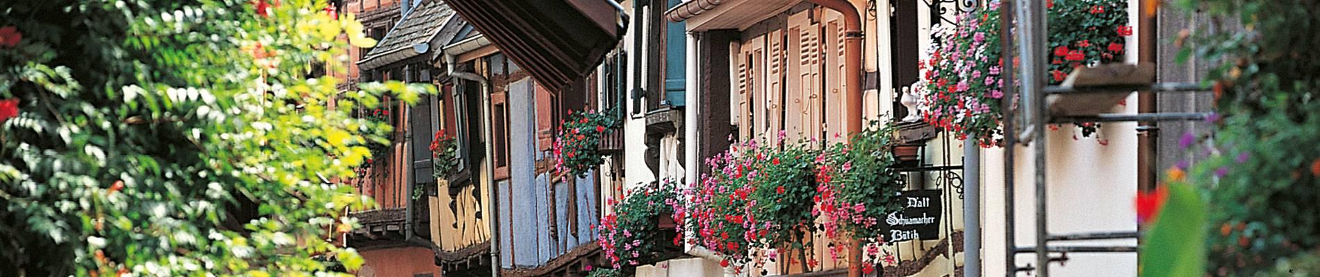 Eguisheim-Vin.jpg