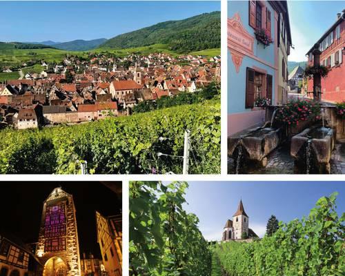 AG-LPBVF-Alsace-2021.jpg