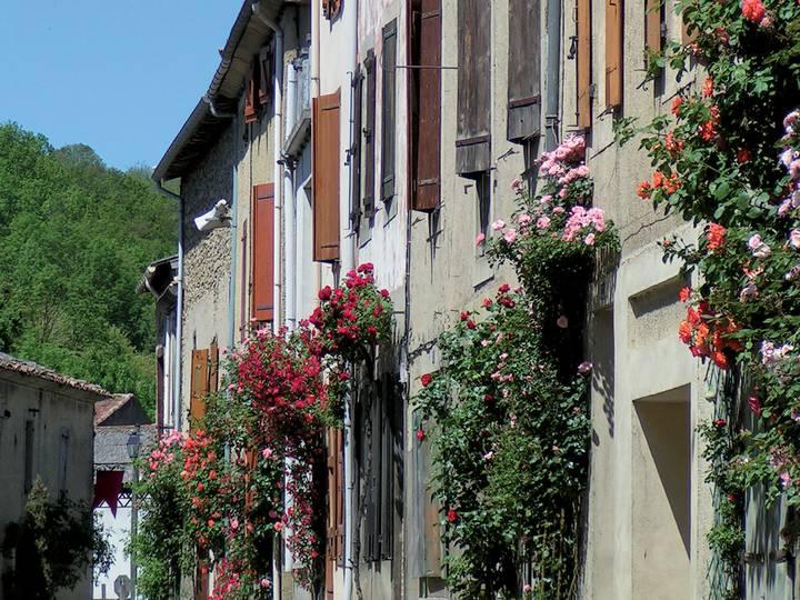 Camon-grande-rue-et-rosiers-_-OT-Camon.jpg