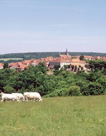 Flavigny-sur-Ozerain image