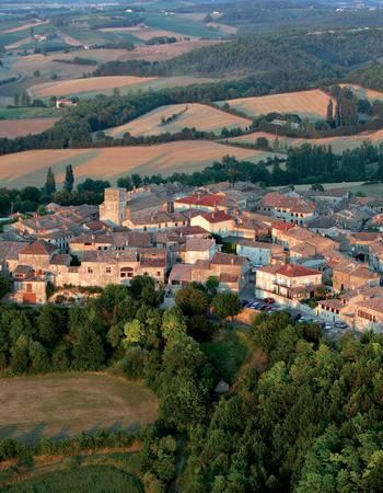 Castelnau-de-Montmiral image